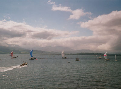 Cruising yachts running with spinnakers set in the regatta at Beaumaris on 11 August at 1000 GMT.