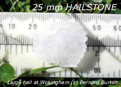 Large hail 25 mm that fell in Wokingham on 25 August 2005. Click for larger.